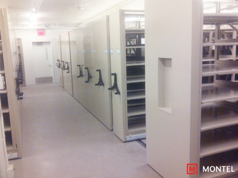 Montel helped the NYPL lay the groundwork for its new mobile library storage system.